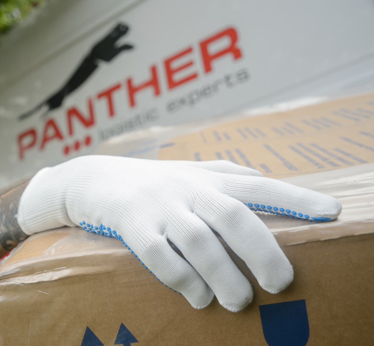 Panther to launch Sunday deliveries and two-hour windows