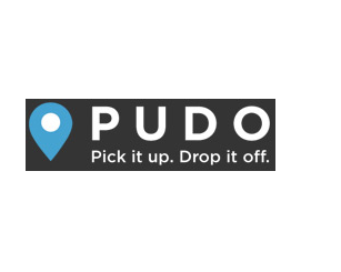 PUDO Inc. reports annual results