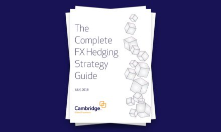 The Complete FX Hedging Strategy Guide